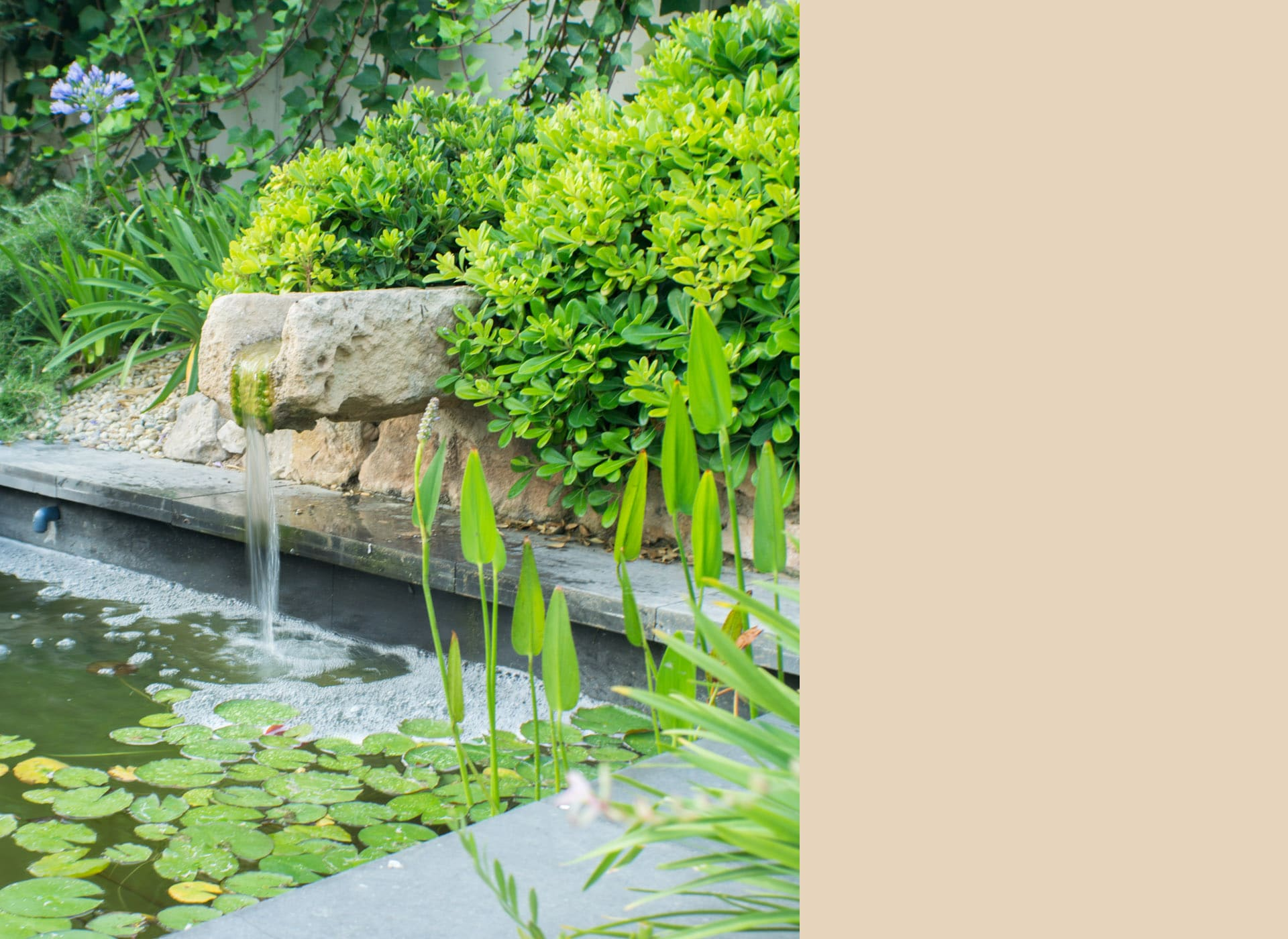 Estanque jardin espectacular fuente paisajismo for Fuente estanque jardin